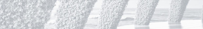 Graues schmales Bild zeigt bepflanzte Säulen und im Hintergrund das Meer